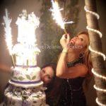 lilyestefan_birthdayddcake